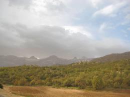 منطقه حفاظت شده تنگ صیاد