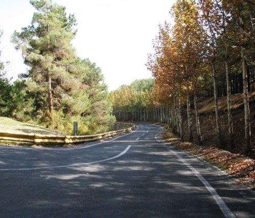 لویزان 1 پارک جنگلی لویزان