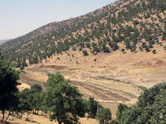 روستای نژو - بانه