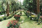 باغ گلشن طبس ، زیباترین باغ تاریخی در دل کویر