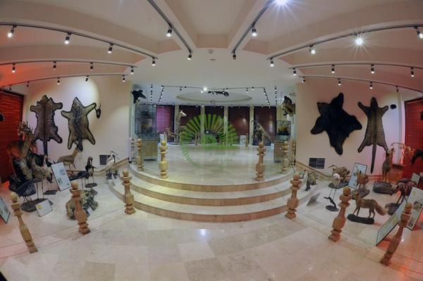 me5RN_big موزه طبیعت و حیات وحش دار آباد