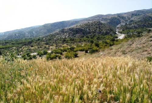 جهان-نما6 منطقه حفاظت شده جهاننما
