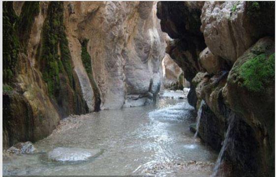چشمه آبگرم دلفان