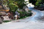نگرش جامعه میزبان به اثرات محیطی و اقتصادی گردشگری در نواحی روستایی