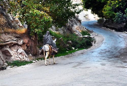 روستای-گلیان9 نگرش جامعه میزبان به اثرات محیطی و اقتصادی گردشگری در نواحی روستایی