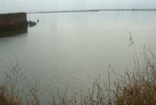 سد-گلستان2 دریاچه سد گلستان