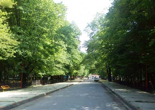 قرق5 پارک جنگلی قرق