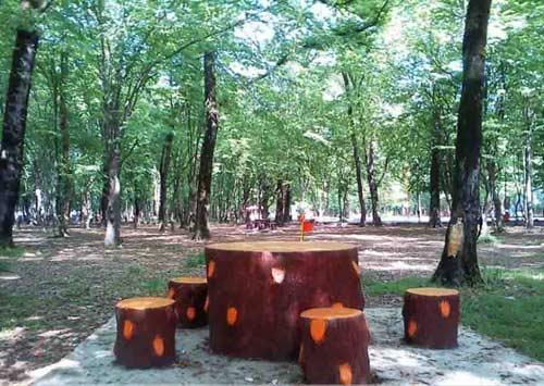 قرق8 پارک جنگلی قرق