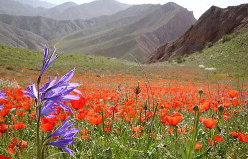 منطقه-حفاظت-شده-ساریگل11 پارک ملی ساریگل