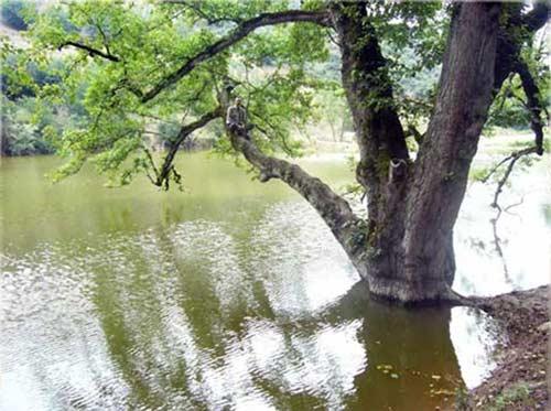 دریاچه-شورمست5