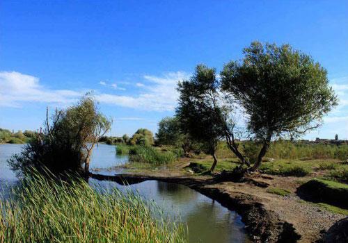 رودخانه-زرینه-رود2 رودخانه زرینه رود
