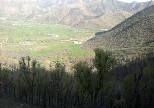 روستای شوی بانه