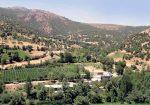 روستای نجنه علیا