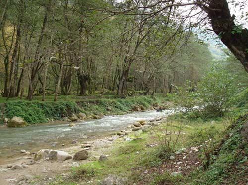 پارک-جنگلی-چالوس پارک جنگلی چالوس