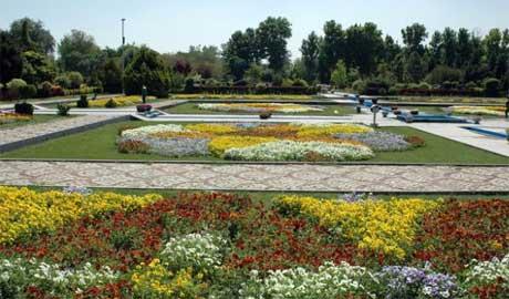 گلها باغ گلها