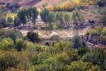 امامزاده محسن