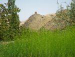 برج فیض آباد