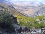 منطقه حفاظت شده لشگر