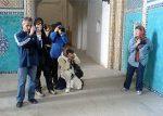 سفر گردشگران انفرادی به ایران بدون بیمه مسافرتی