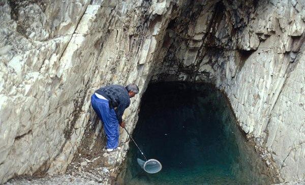 چشمه یا آب هوهو