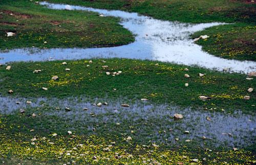 -31 دریاچه برم فیروز
