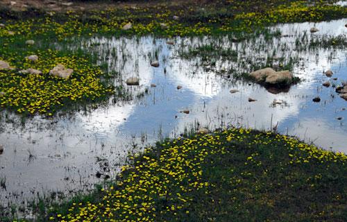 -91 دریاچه برم فیروز