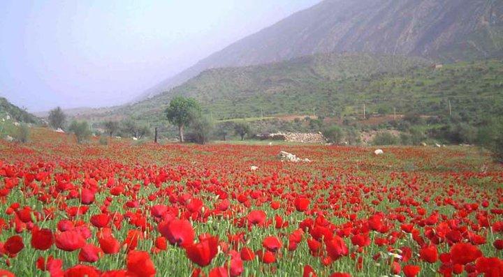 بهجان 2 روستای تاریخی بهجان