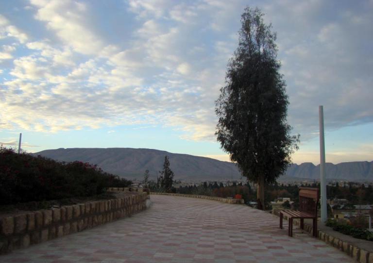 تل 8 پارک جنگلی تل حاجی