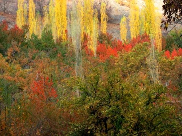 روستای زشک از جاهای دیدنی مشهد جاهای دیدنی مشهد ،100 جاذبه گردشگری معروف