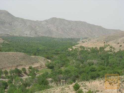 روستای سرسبز مصعبی