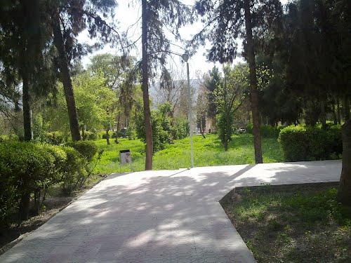 باغ نظر