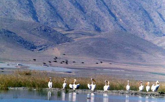 -1 دریاچه پریشان