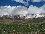 منطقه حفاظت شده کوسالان و شاهو
