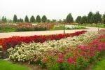 ۱۰ باغ زیبای تهران