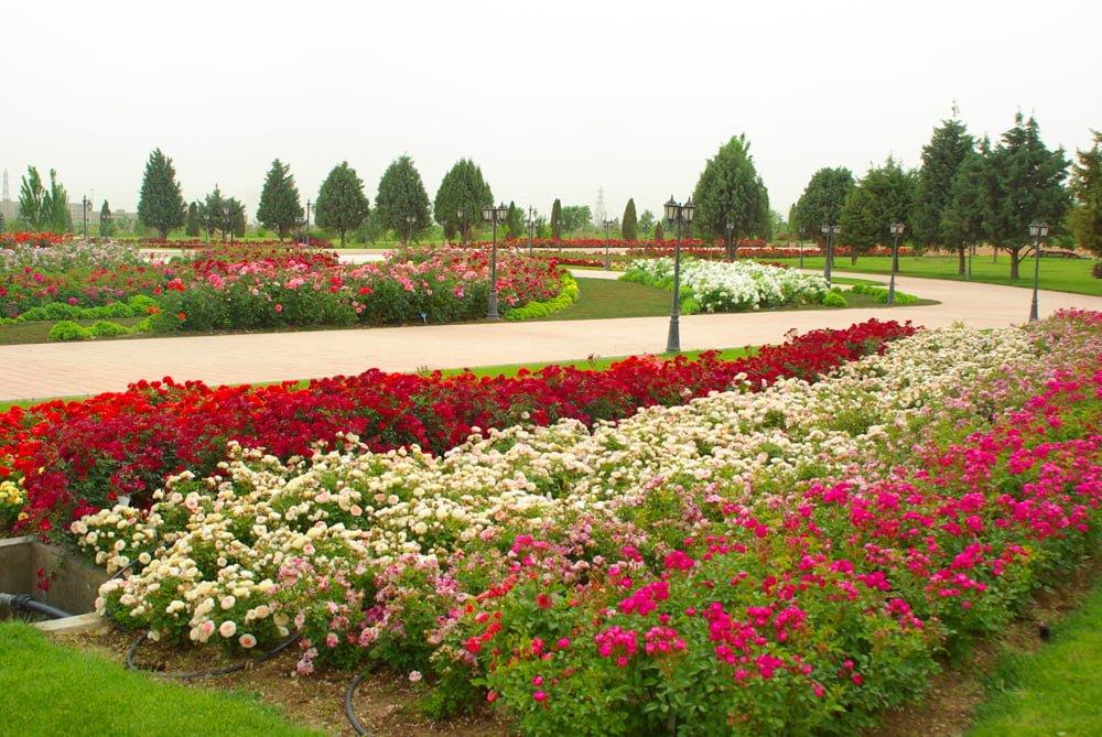 جاهای دیدنی تهران باغ گیاه شناسی ملی جاهای دیدنی تهران (100 جاذبه گردشگری تهران)