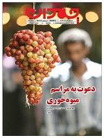 Chamedan127 دانلود ضمیمه چمدان روزنامه جام جم – ۱۳۹۲/۹/۱9