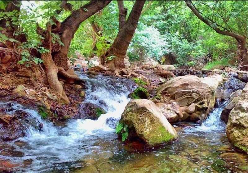 آبشار شیرز  آبشار شیرز