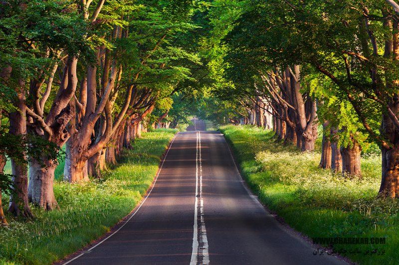 جاده اسالم خلخال 2 800x533 - جاده اسالم به خلخال | جاذبه های گردشگری ایران