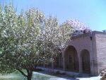 مسجد حمامیان