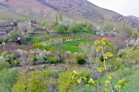 روستای شوکورلو