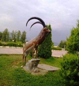 استخر و پارک پاشوران