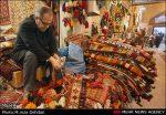 دومین تور آشنایی با جاذبه های گردشگری فارس اجرا شد