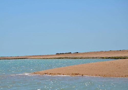 جزیره گرم4 جزیره ام الکُرم