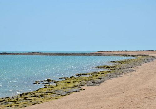 جزیره گرم6 جزیره ام الکُرم