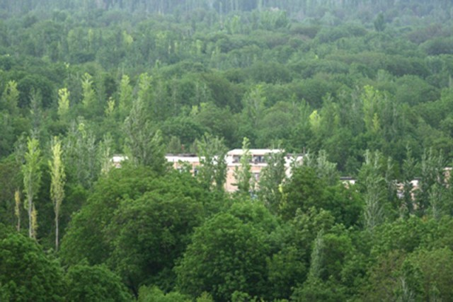شهر فیرورق