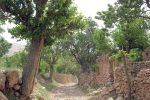 گردشگری فراموش شده روستای چرمه