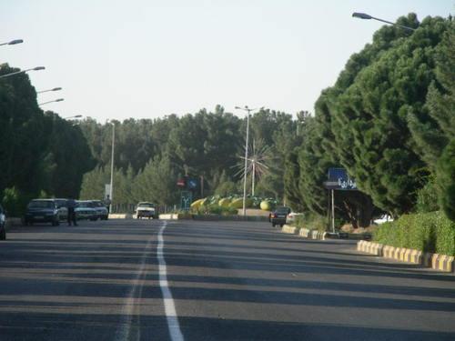 شهر تایباد