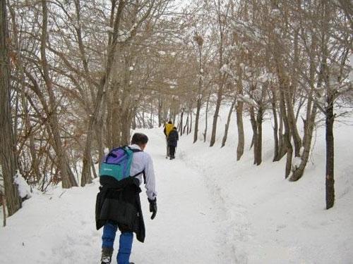 کوه-کلک-چال2 کوه کلک چال، یخچال پربرف تهران