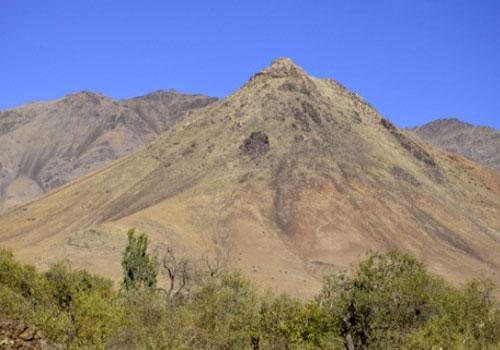 کوه-گندم-کوه