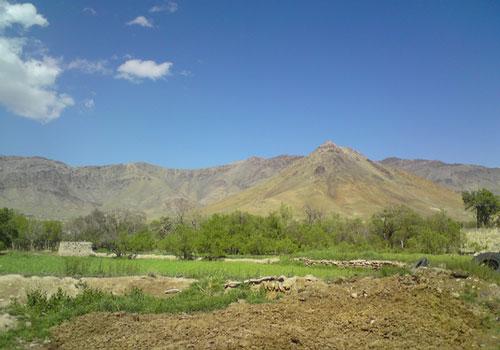 کوه-گندم-کوه2